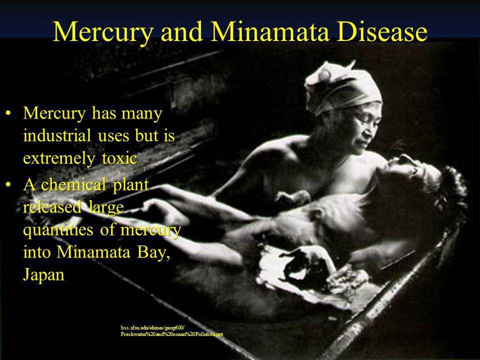 Mercury and Minamata Disease