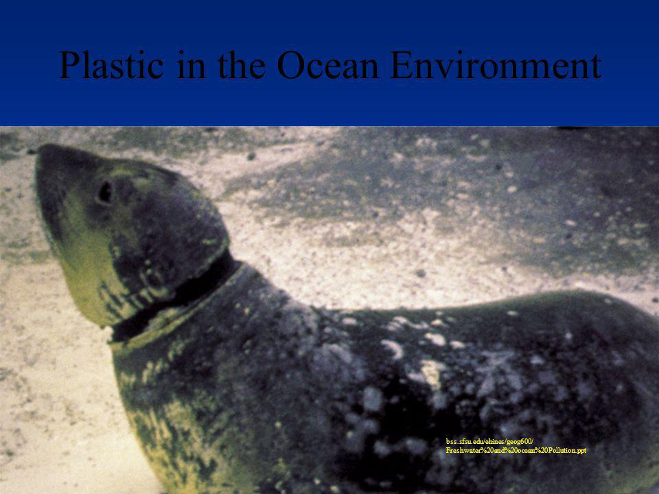 Plastic in the Ocean Environment