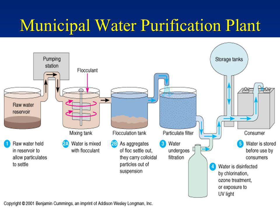 Municipal Water Purification Plant