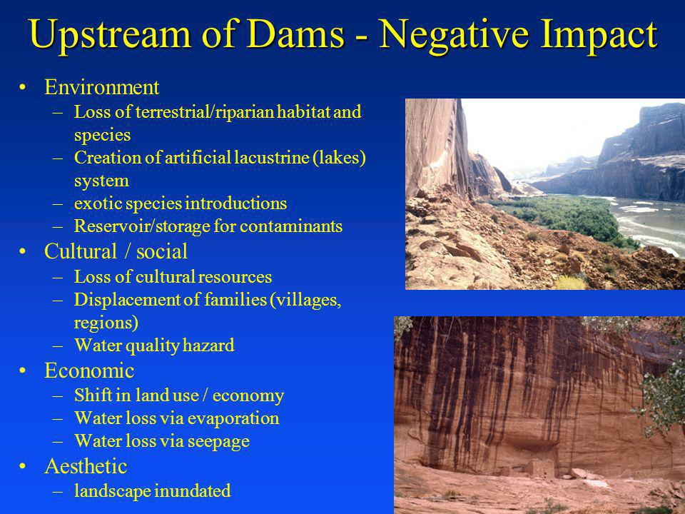 Upstream of Dams - Negative Impact