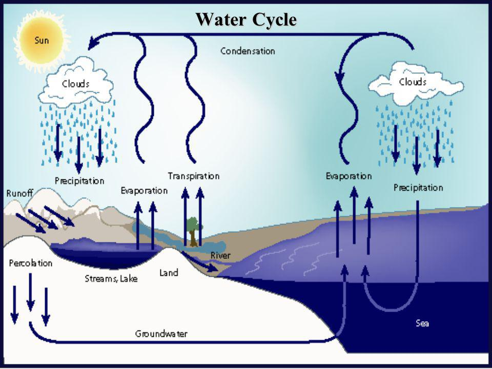 Water Cycle www.athensclarkecounty.com/~stormwater/ SW%20Management.htm