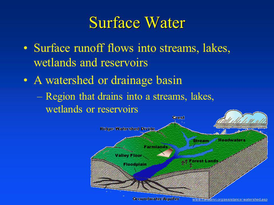 Surface Water Surface runoff flows into streams, lakes, wetlands and reservoirs. A watershed or drainage basin.