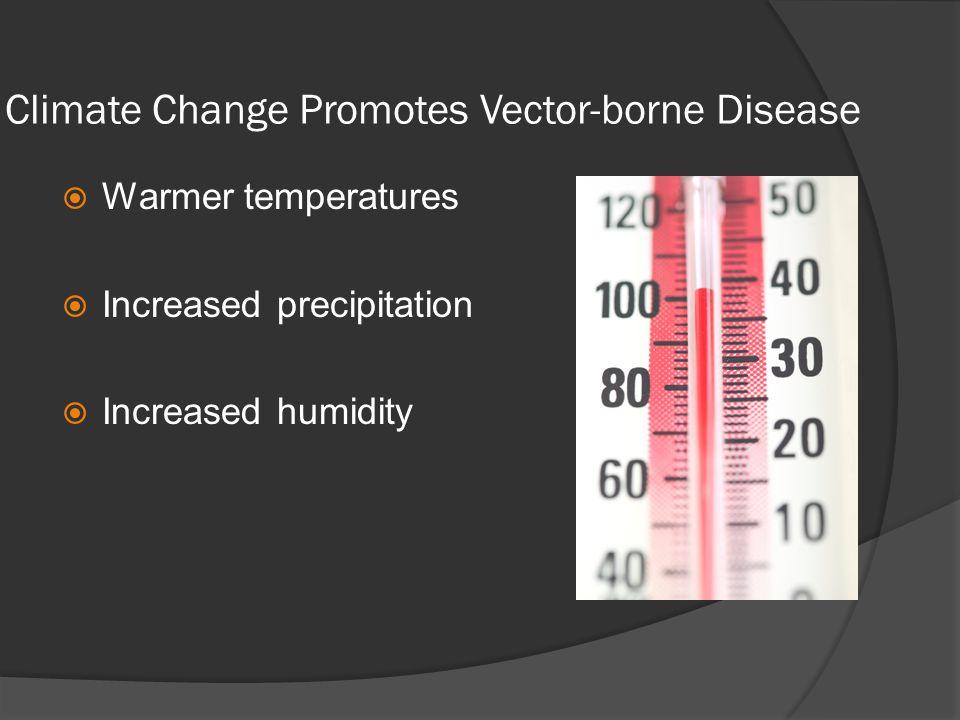 Climate Change Promotes Vector-borne Disease