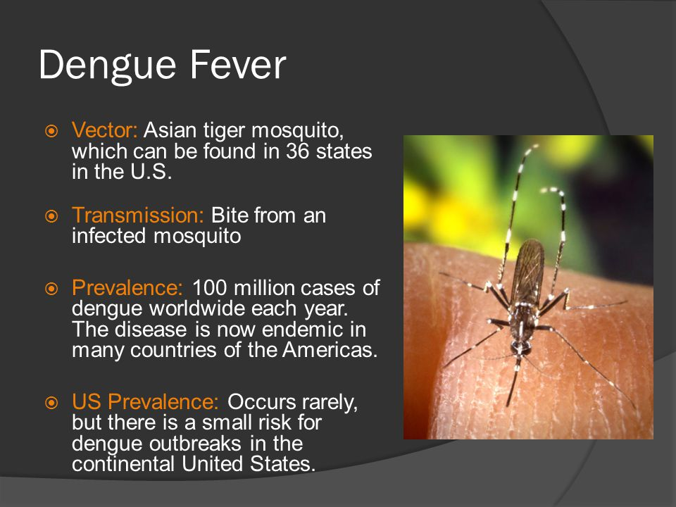 Dengue Fever Vector: Asian tiger mosquito, which can be found in 36 states in the U.S. Transmission: Bite from an infected mosquito.