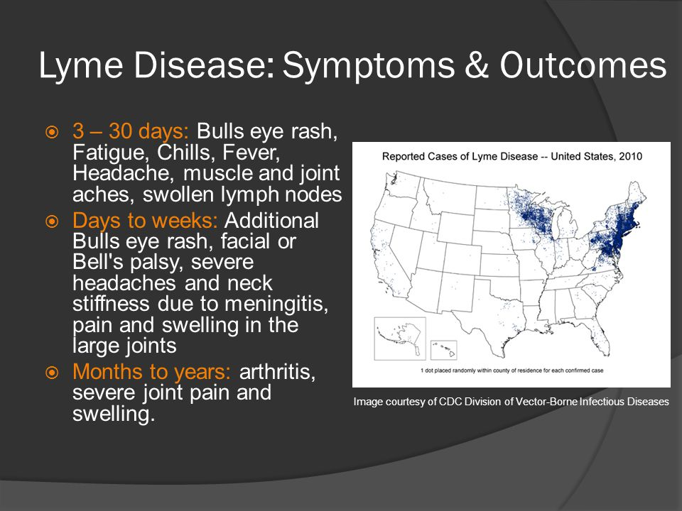 Lyme Disease: Symptoms & Outcomes