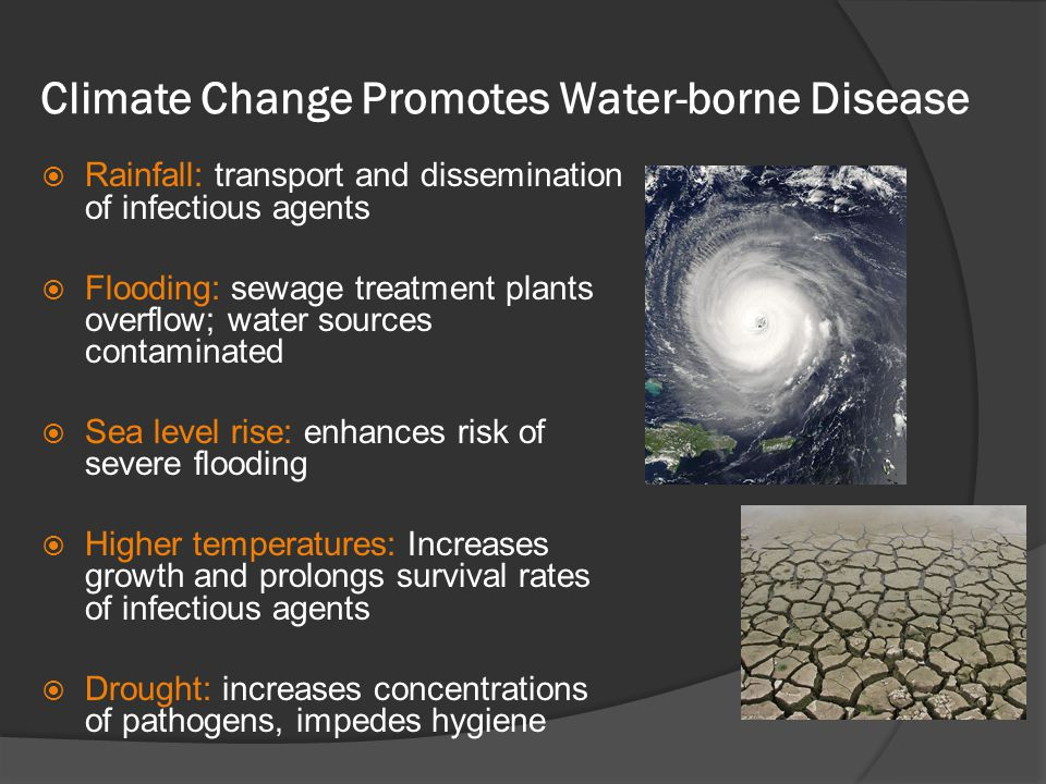 Climate Change Promotes Water-borne Disease