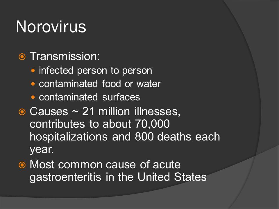 Norovirus Transmission: