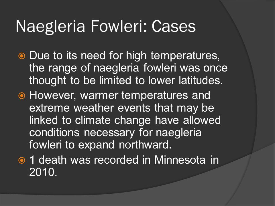 Naegleria Fowleri: Cases