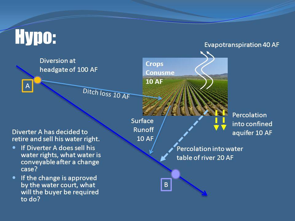 Hypo: Evapotranspiration 40 AF Diversion at headgate of 100 AF Crops