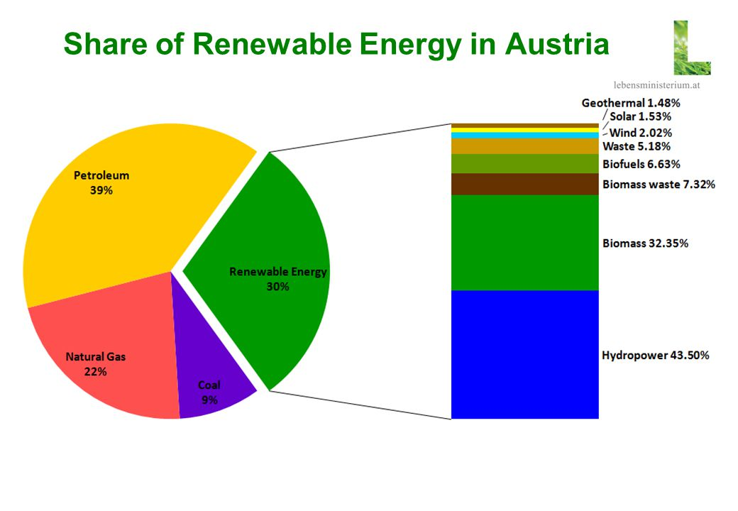 Share of Renewable Energy in Austria