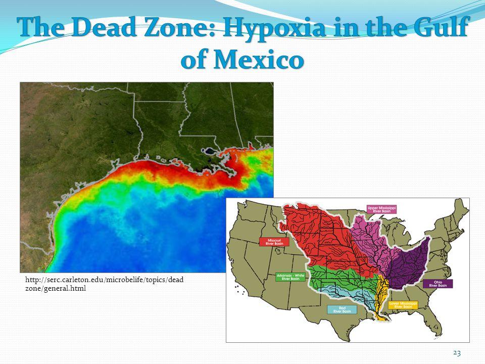 The Dead Zone: Hypoxia in the Gulf of Mexico