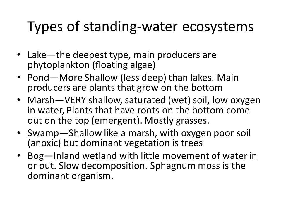 Types of standing-water ecosystems