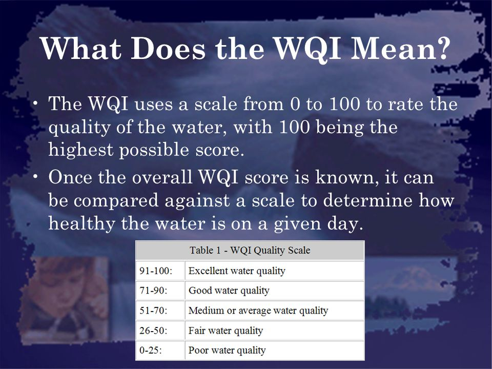 What Does the WQI Mean The WQI uses a scale from 0 to 100 to rate the quality of the water, with 100 being the highest possible score.