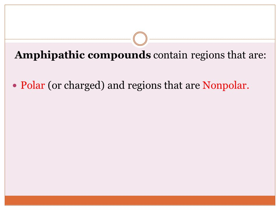 Amphipathic compounds contain regions that are: