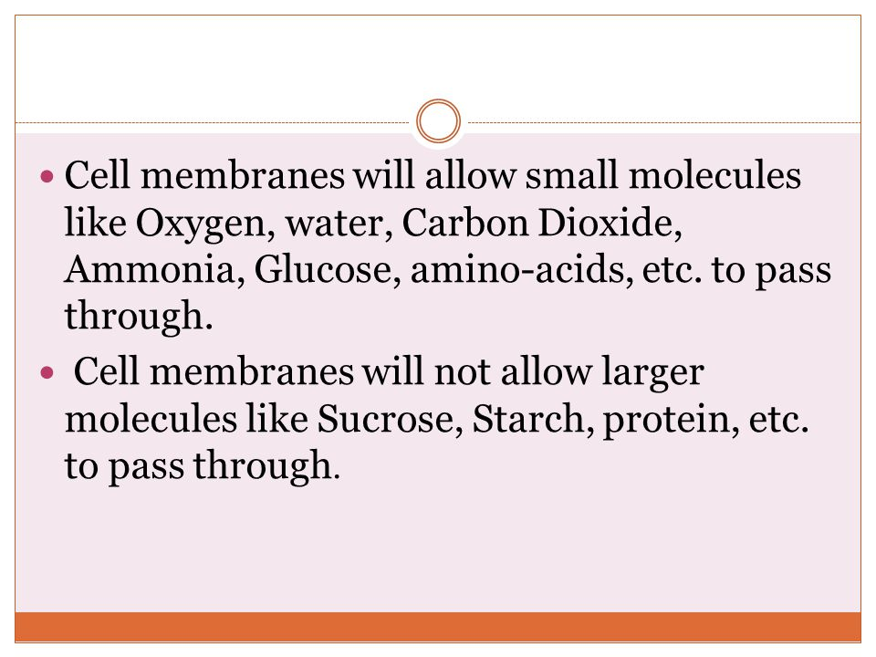 Cell membranes will allow small molecules like Oxygen, water, Carbon Dioxide, Ammonia, Glucose, amino-acids, etc. to pass through.