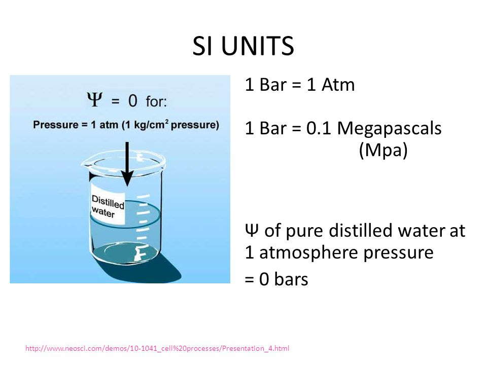SI UNITS 1 Bar = 1 Atm 1 Bar = 0.1 Megapascals (Mpa) Ψ of pure distilled water at 1 atmosphere pressure = 0 bars