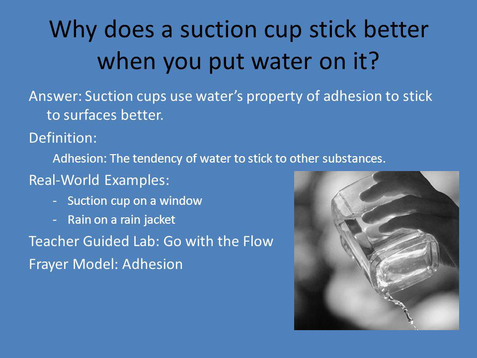 Why does a suction cup stick better when you put water on it