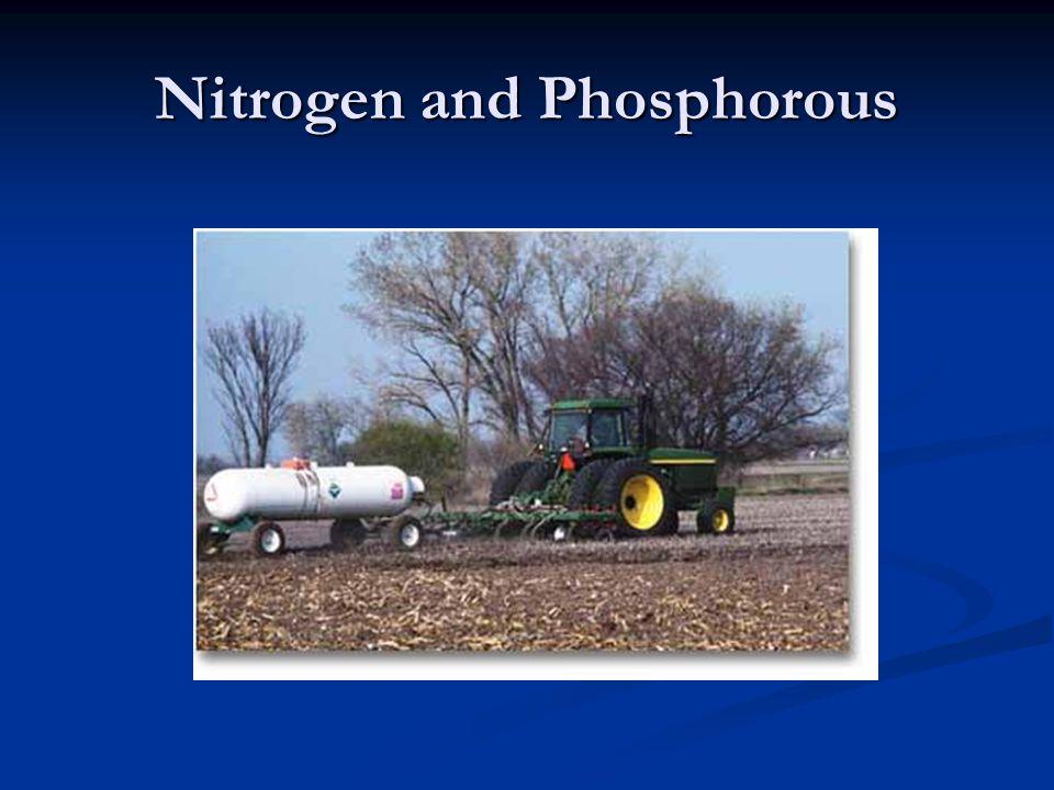 Nitrogen and Phosphorous