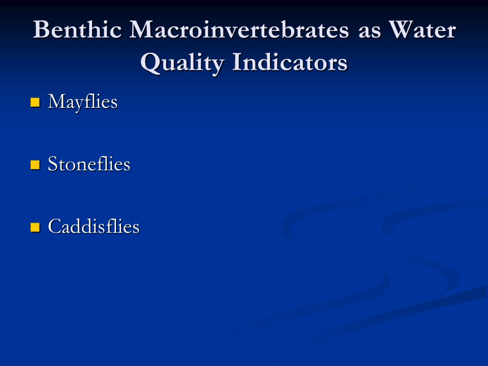 Benthic Macroinvertebrates as Water Quality Indicators