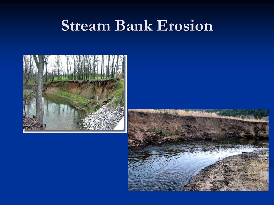 Stream Bank Erosion