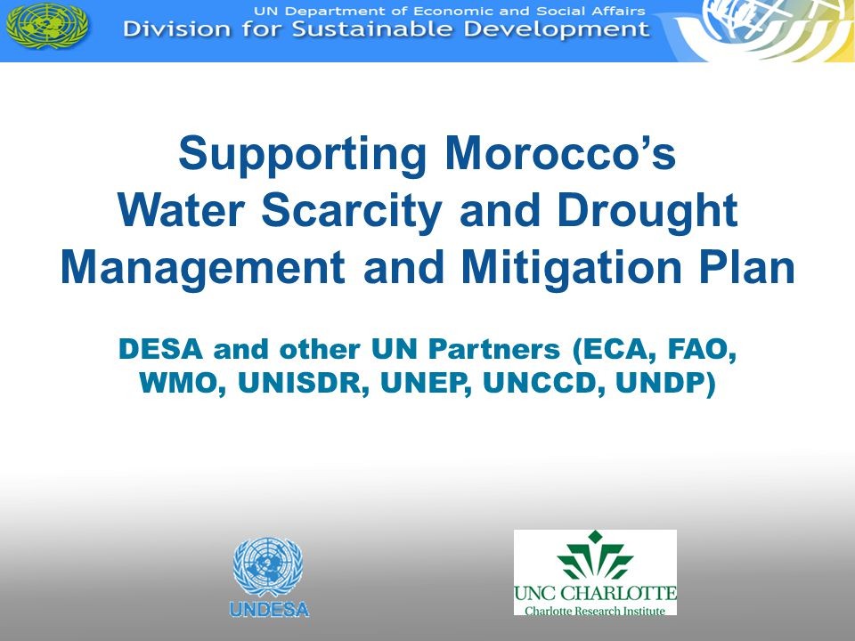 DESA and other UN Partners (ECA, FAO, WMO, UNISDR, UNEP, UNCCD, UNDP)