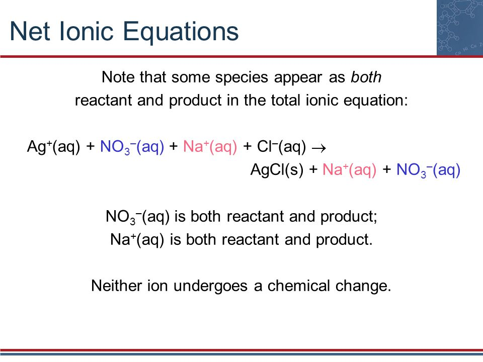 Net Ionic Equations Note that some species appear as both