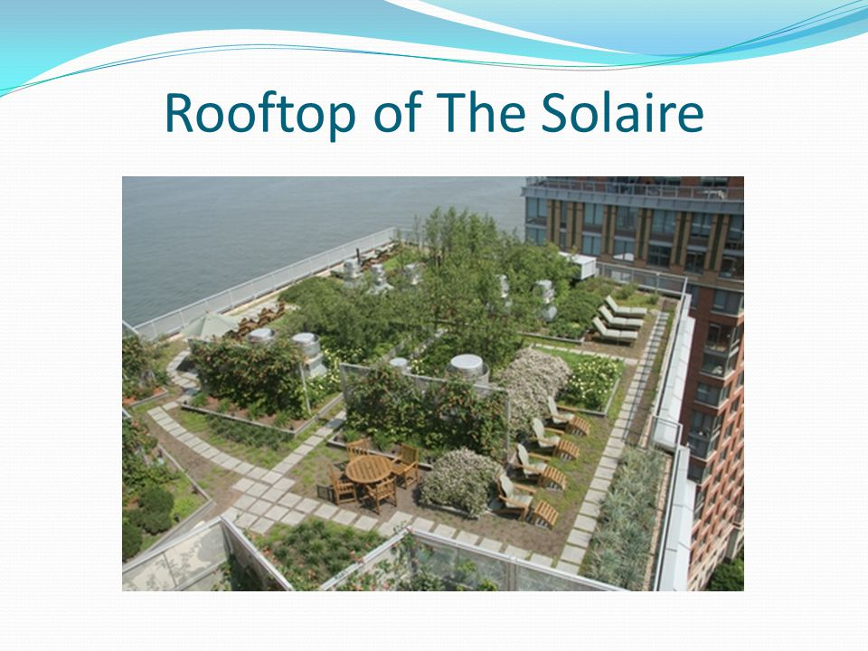 Rooftop of The Solaire