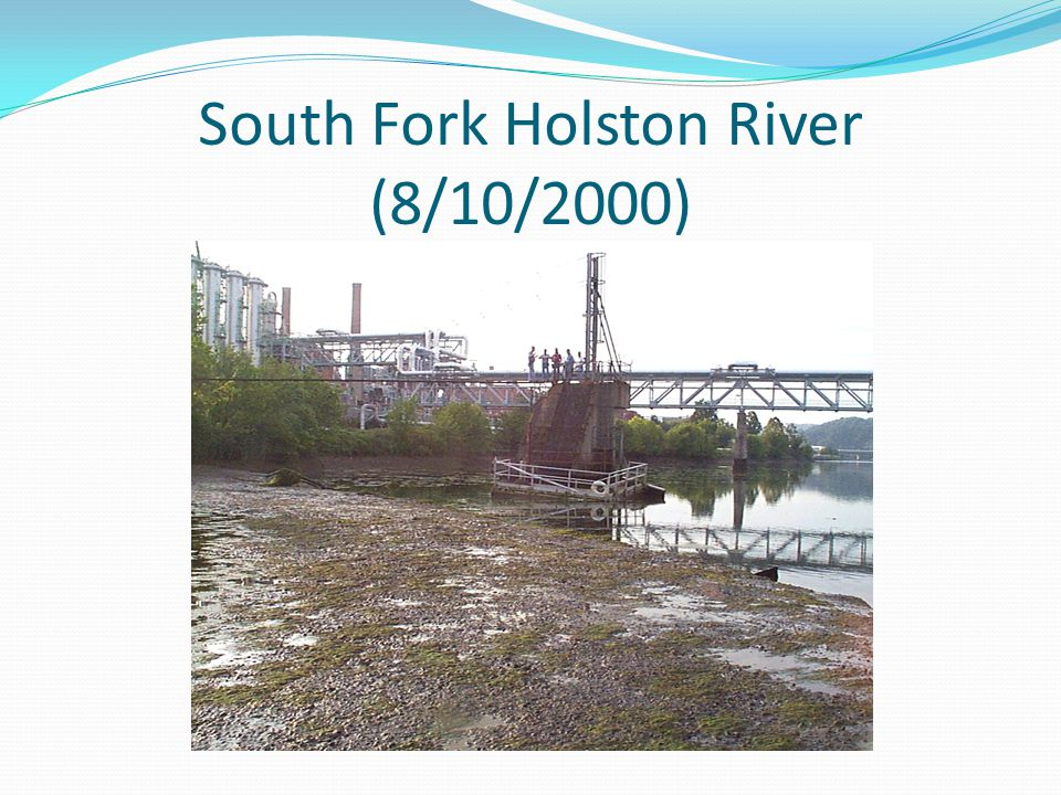 South Fork Holston River (8/10/2000)