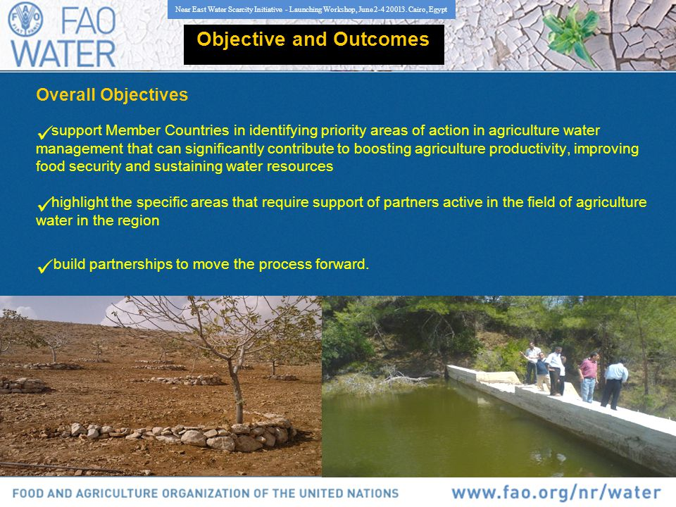 Objective and Outcomes