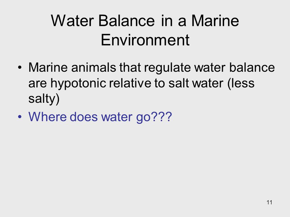 Water Balance in a Marine Environment