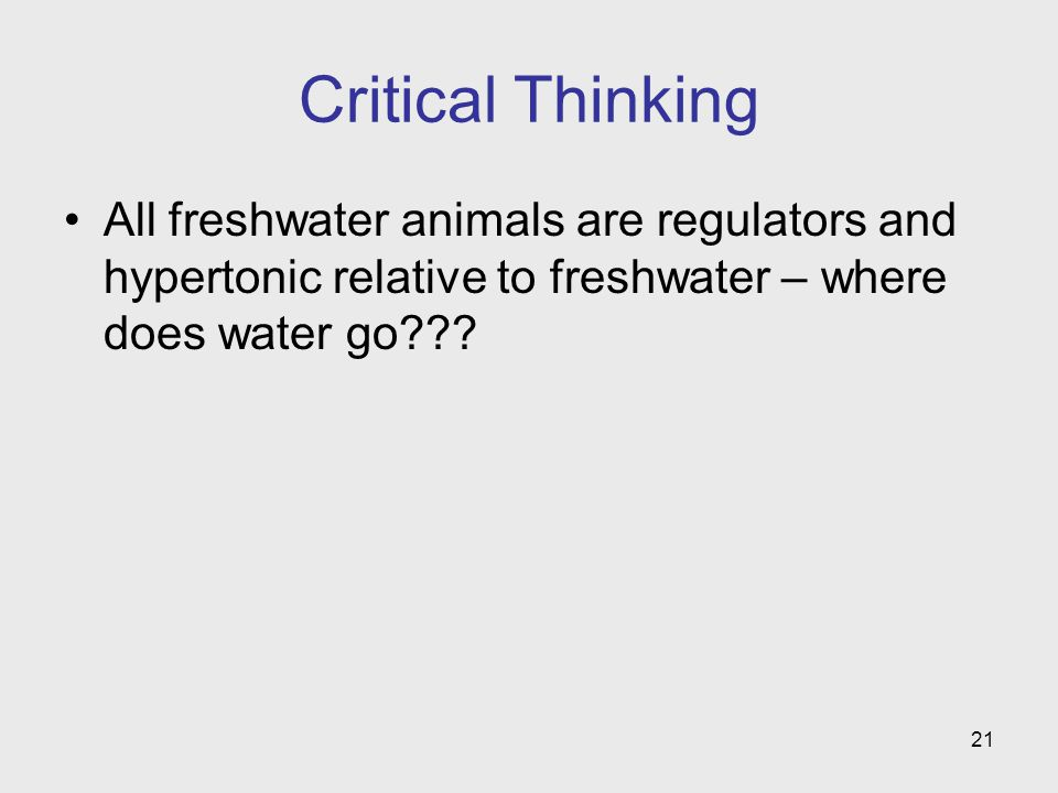 Critical Thinking All freshwater animals are regulators and hypertonic relative to freshwater – where does water go