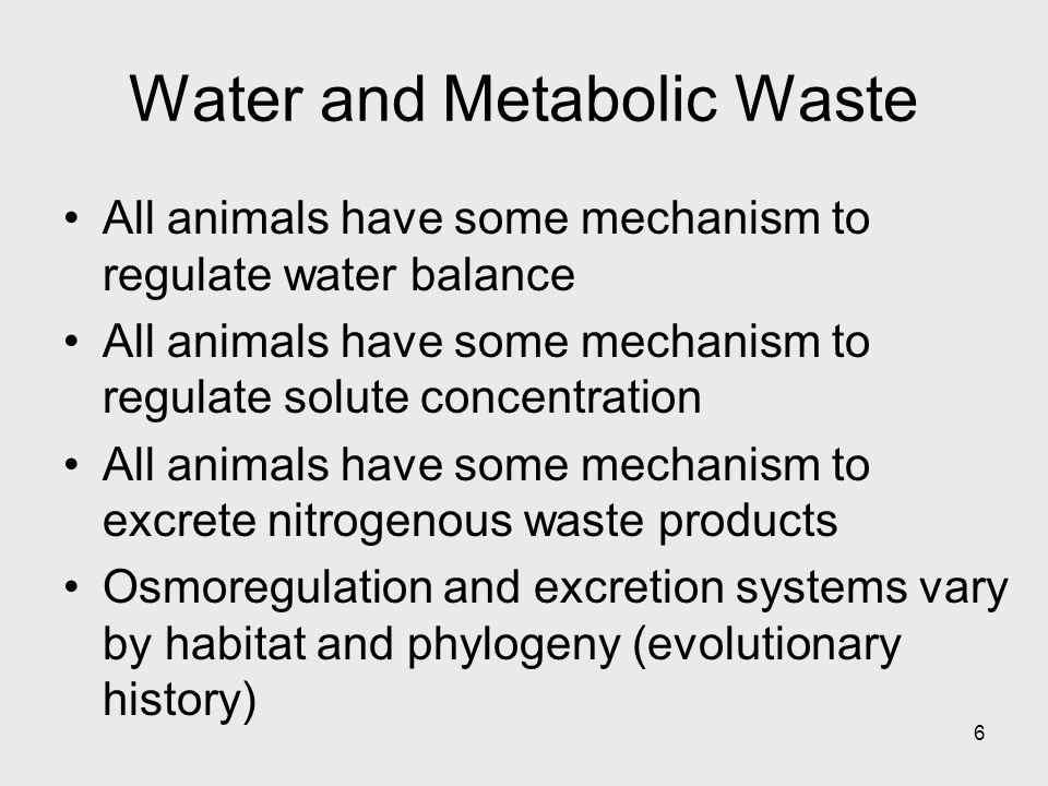 Water and Metabolic Waste