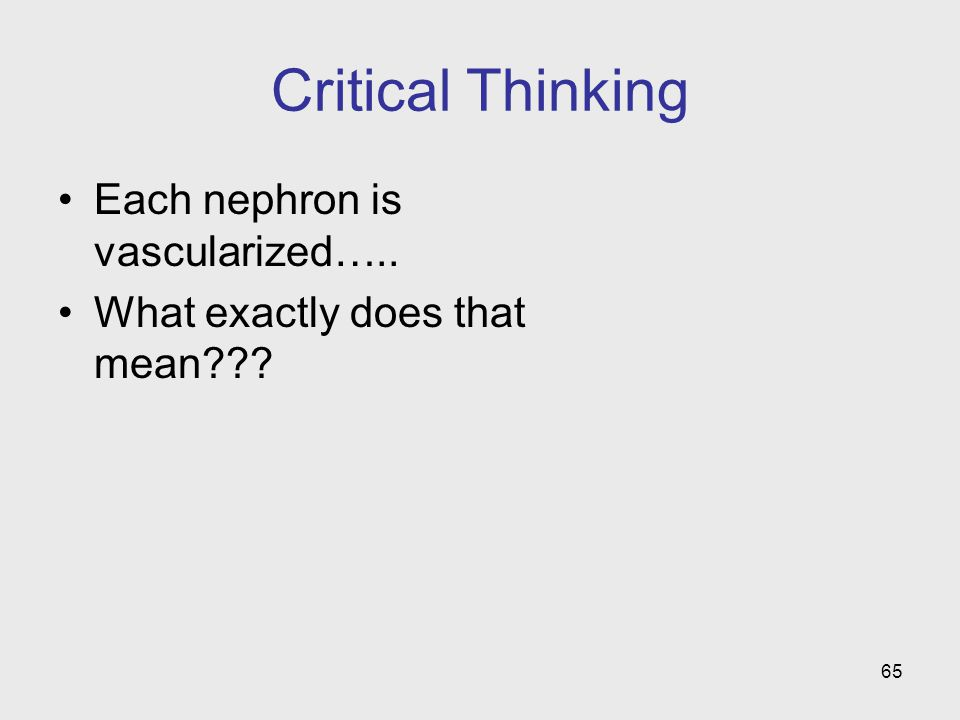Critical Thinking Each nephron is vascularized…..