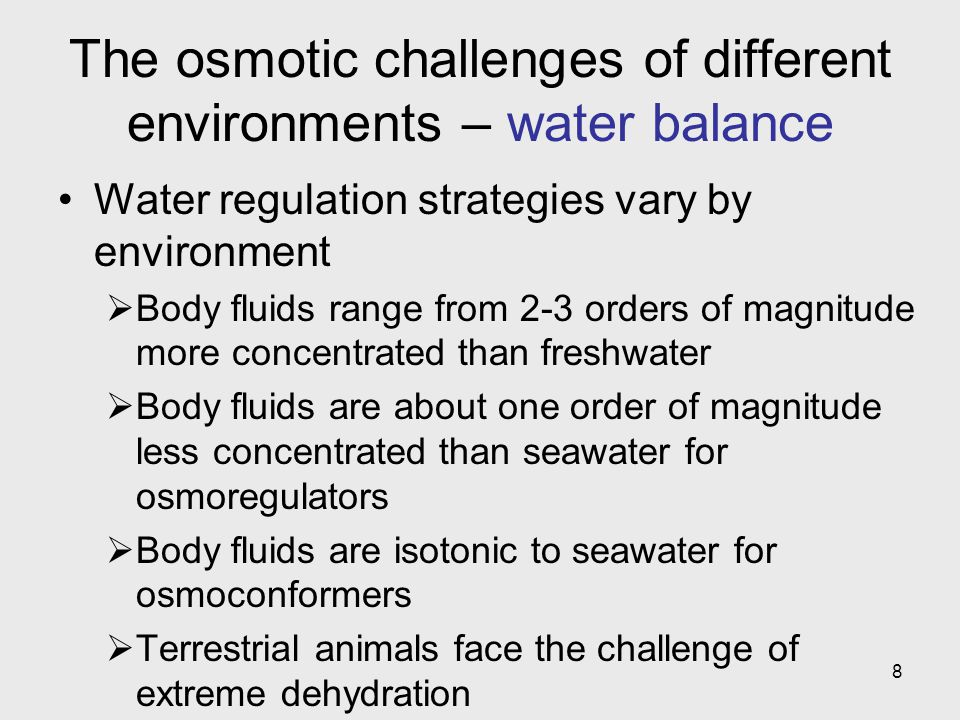 The osmotic challenges of different environments – water balance
