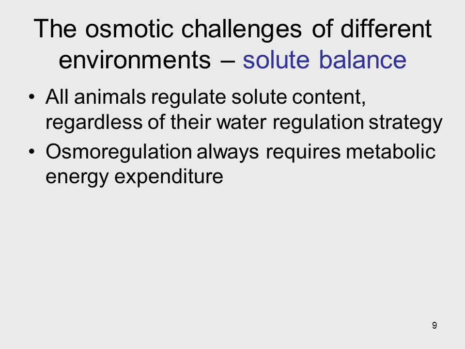 The osmotic challenges of different environments – solute balance