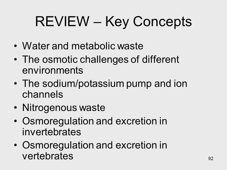 REVIEW – Key Concepts Water and metabolic waste