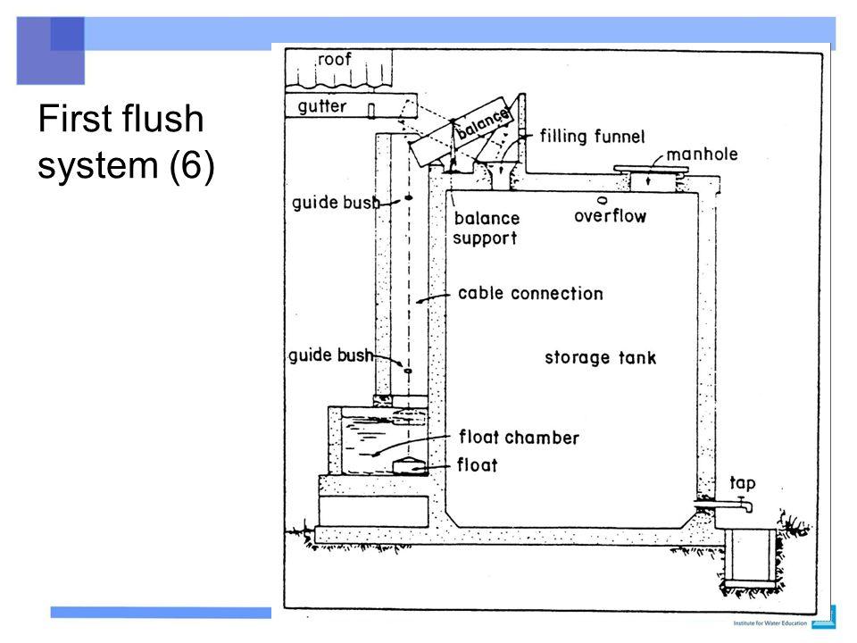 First flush system (6)