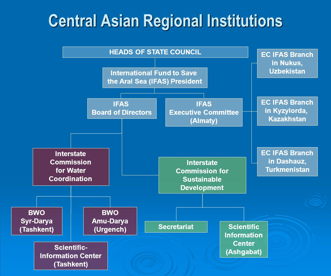 Central Asian Regional Institutions