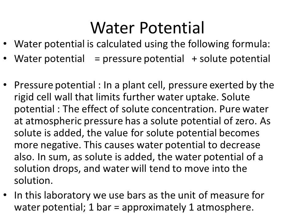 Water Potential Water potential is calculated using the following formula: Water potential = pressure potential + solute potential.