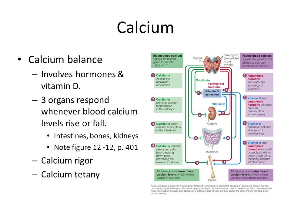 Calcium Calcium balance Involves hormones & vitamin D.