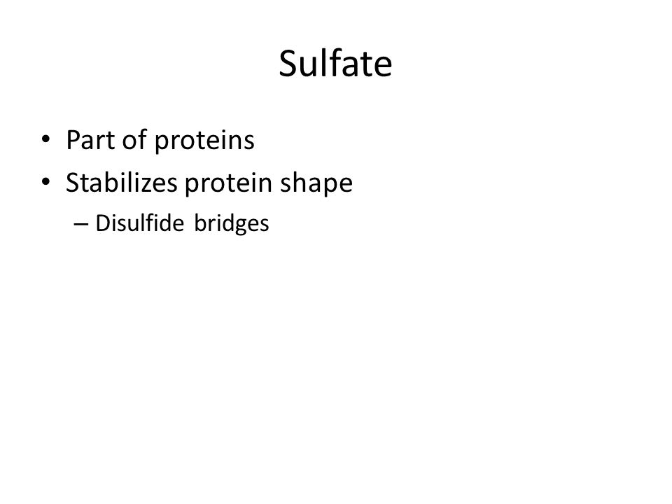 Sulfate Part of proteins Stabilizes protein shape Disulfide bridges