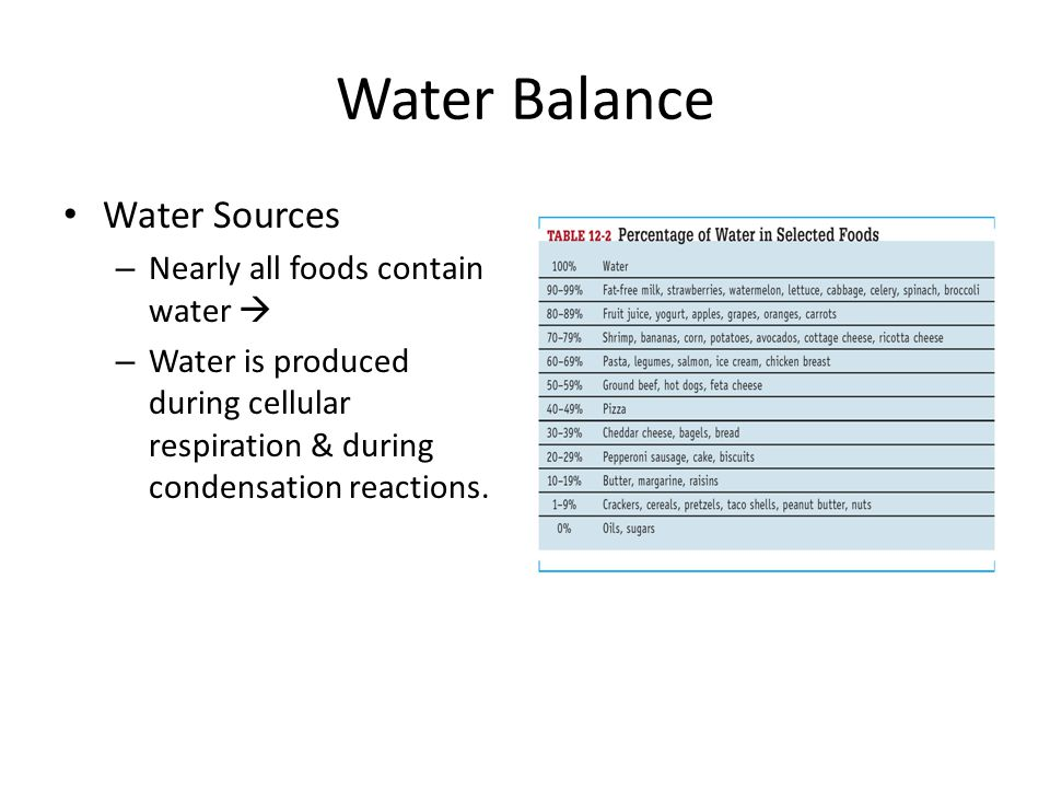 Water Balance Water Sources Nearly all foods contain water 