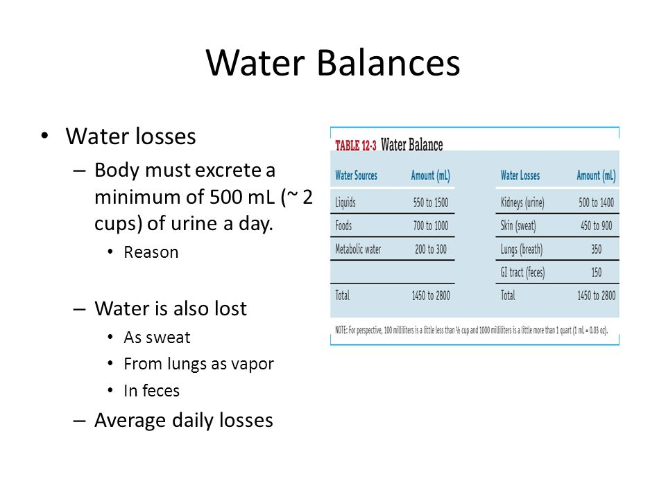 Water Balances Water losses