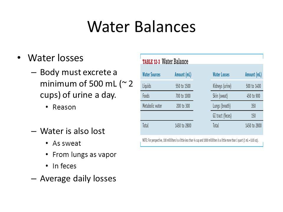 Water Balances Water losses