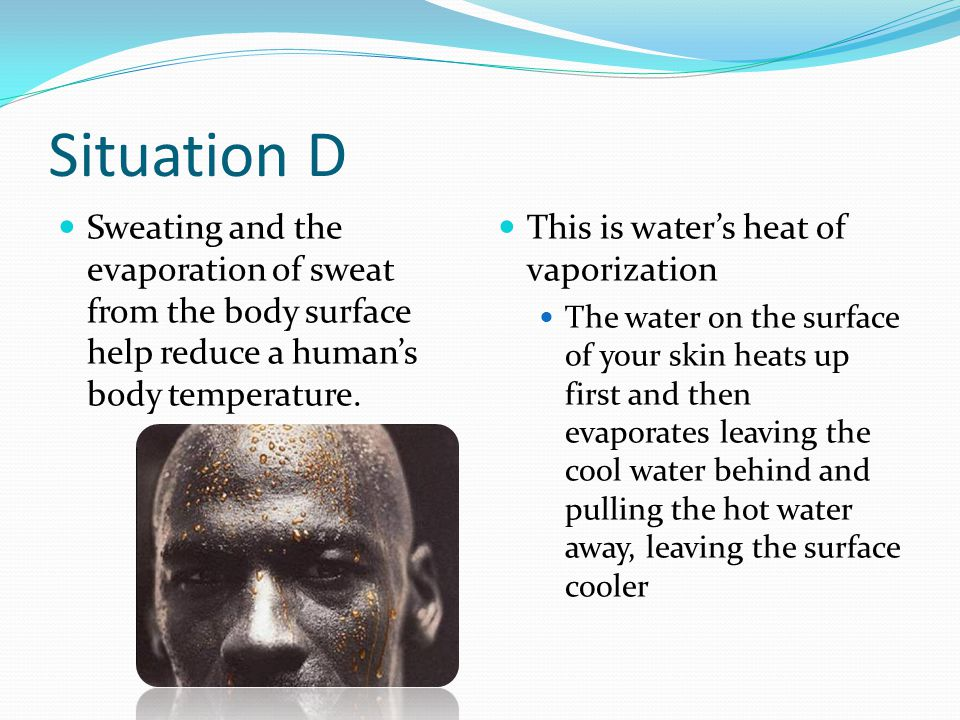 Situation D Sweating and the evaporation of sweat from the body surface help reduce a human's body temperature.