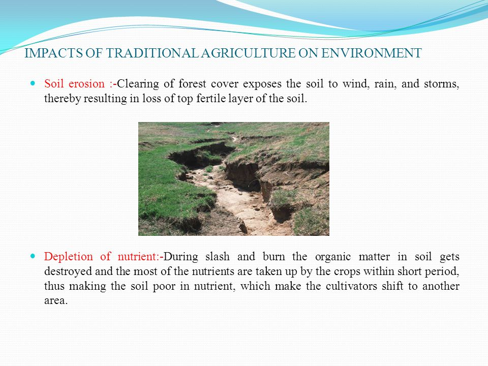 IMPACTS OF TRADITIONAL AGRICULTURE ON ENVIRONMENT