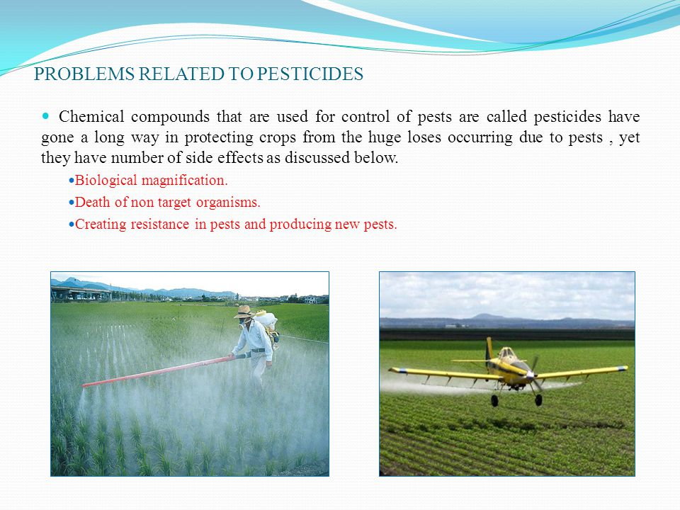 PROBLEMS RELATED TO PESTICIDES