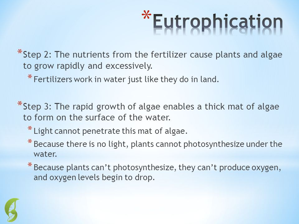 Eutrophication Step 2: The nutrients from the fertilizer cause plants and algae to grow rapidly and excessively.