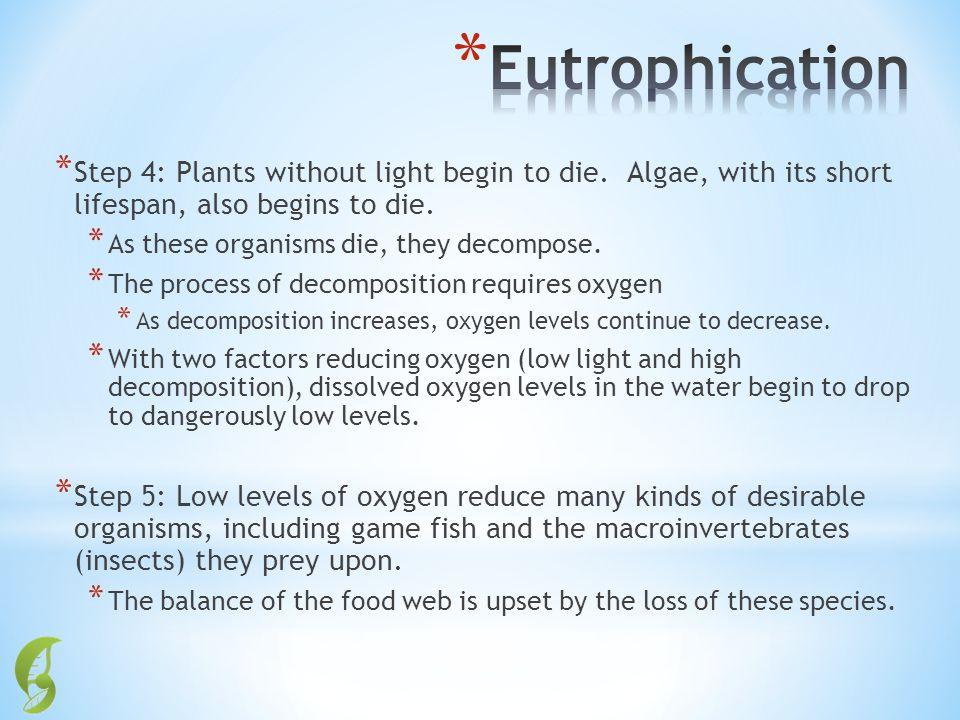 Eutrophication Step 4: Plants without light begin to die. Algae, with its short lifespan, also begins to die.