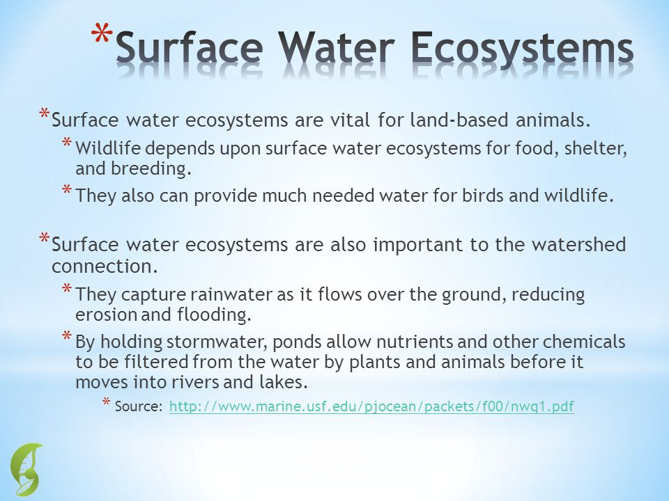 Surface Water Ecosystems